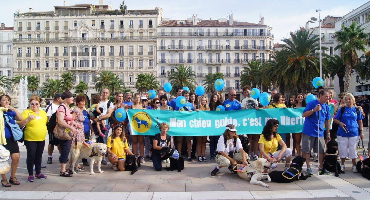 Participation à la Semaine nationale du chien guide