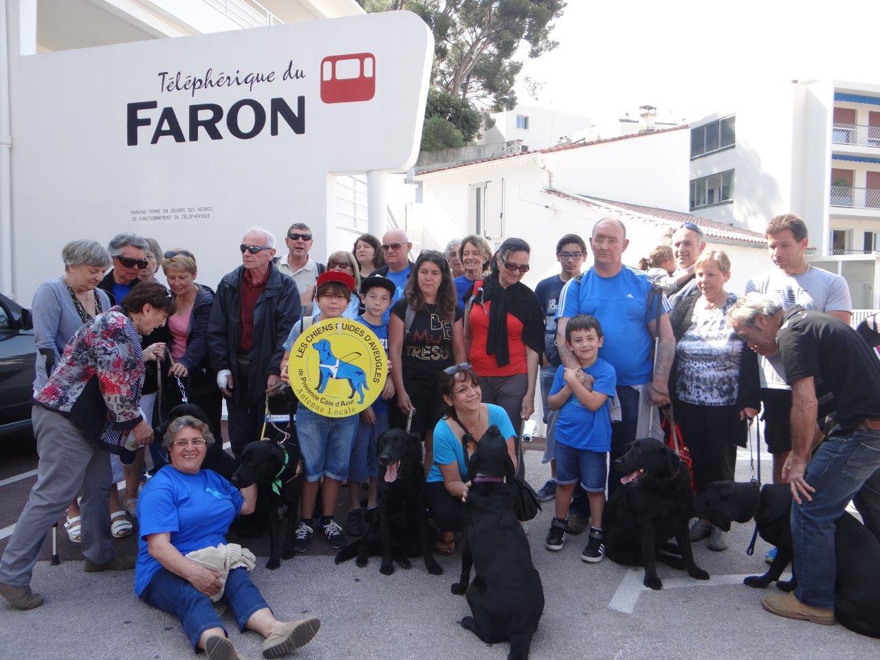 Le pique-nique au Mont Faron de l'antenne Var des Chiens Guides d'Aveugles